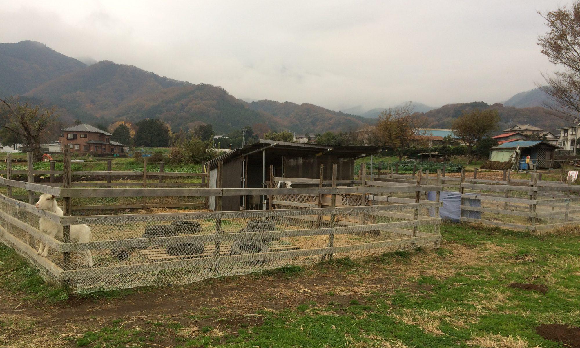NTS 農業ブログ